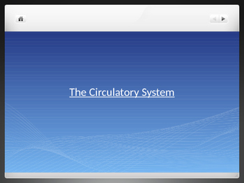 Circulatory System Review PowerPoint