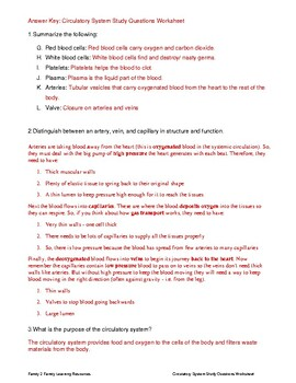 Circulatory System Study Questions Worksheet