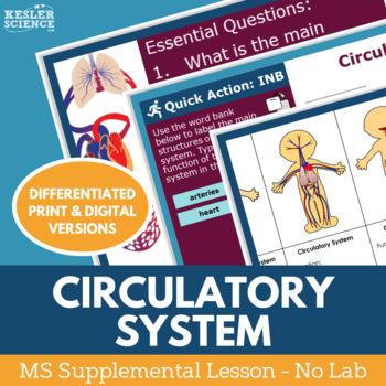 Circulatory System - Supplemental Lesson - No Lab
