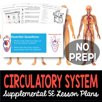 Circulatory System - Supplemental Lesson - No Lab