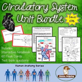 Circulatory System Unit Bundle