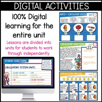 Circulatory System Unit: Heart, blood, blood vessels, diagrams, and more!