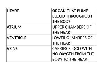 Circulatory System Vocabulary