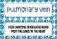 Circulatory System Vocabulary Card Sort