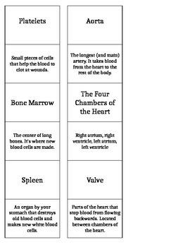 Circulatory System Vocabulary Matching Game