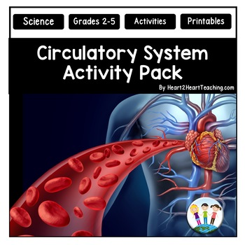 Human Body Systems: Circulatory System Activities & Vocabulary Posters