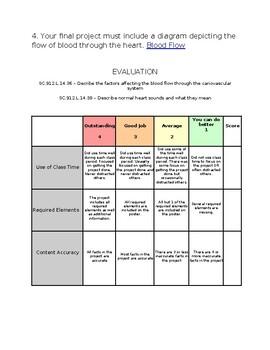 Circulatory System Webquest