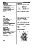 Circulatory System Worksheet