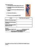 Circulatory System and Cellular Respiration (Living Environment / ESL)