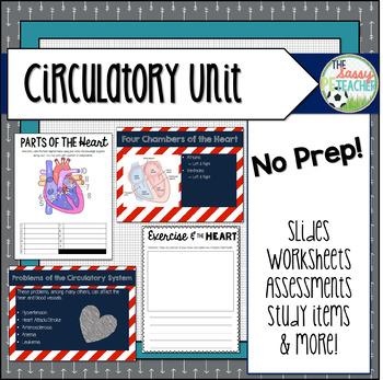 Circulatory Unit