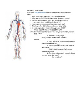 Human Body- Circulatory Video Link and Questions.