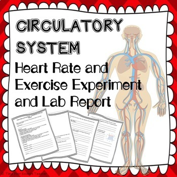 Circulatory system Lab ~ Heart Rate and Exercise ~ Experiment and Lab Report