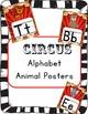 Big Circus Themed Pack Bundle!