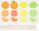 Citrus Clipart; Fruit, Lemon, Lime, Orange, Grapefruit