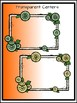 Citrus Frames Clipart