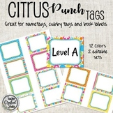Citrus Punch Tags for Cubbies, Name Tags and Coat Hooks