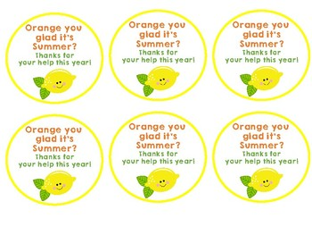 Citrus Themed Volunteer Gift Tags - Editable
