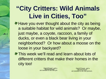 """City Critters: Wild Animals Live in Cities""  Vocabulary & Spelling"