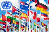 Civics- The United Nations Lesson Plan!