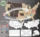 Civil War Clip Art & Map Set {Messare Clips and Design}