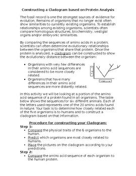 Cladogram Activity Student Handout
