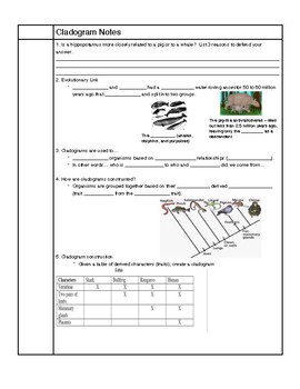 Cladogram Guided Notes