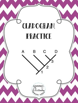 Cladogram Practice