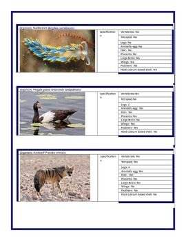 Cladogram investigation with 15 different organisms