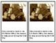 Clara Barton Differentiated Mini Unit