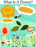 Class Book Cover for a Flower Unit
