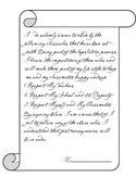 Class Constitution (Rules)