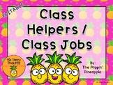 Class Helpers/Jobs in Tropical Pineapple Theme EDITABLE