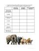Class Mammalia Review