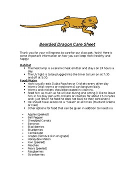 class pet care sheet by hailee young teachers pay teachers