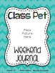 Class Pet Journal & Care Notebook {Guinea Pig}