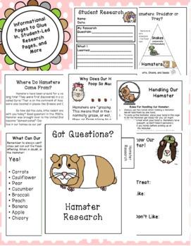 Hamster : Class Pet Journal