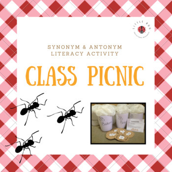 Class Picnic - Synonym and Antonym Literacy Activity
