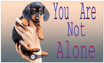 """Class Poster 3 """"You Are Not Alone"""""""