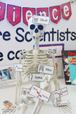 Class Skeleton Sign and Labels