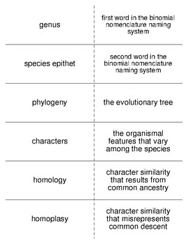 Class and Phylogeny of Animals Vocabulary Flash Cards for Zoology