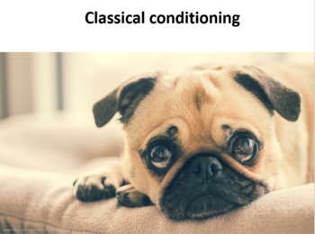 Classical conditioning: basic contingency and phenomena