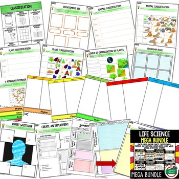 Classification Activities Choice Board, Digital Graphic Organizers