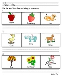 Word Relationships, Category, Classification Activities