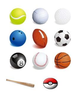 Classification Activities Pictures