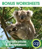 Classification & Adaptation Gr. 5-8 - BONUS WORKSHEETS