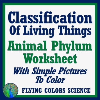 Classification of Living Things - Animal Phylum Overview Worksheet Middle School