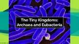Classification- Archaea and Bacteria Kingdoms Presentation