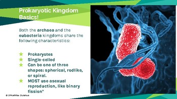 Classification: Archaea and Bacteria Kingdoms Presentation