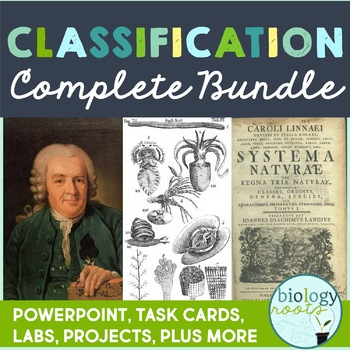 Classification Bundle