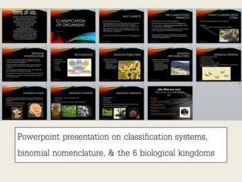 Classification Bundle- Powerpoint, Interactive Notebook & Activity
